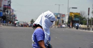 A woman outside Hyderabad finds the best way for her to shield from the sun. -- Photo by AFP/Getty Images