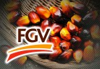 The market has reacted negatively to FGV's proposal to buy a stake in an Indonesian group.