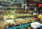 In Hong Kong, whenever possible they prefer to choose their seafood live.