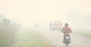 This was the condition in Palangkaraya recently, where the API reading has shot up to well over 1,000. -- Photo by Nanang Indra Kurniawan