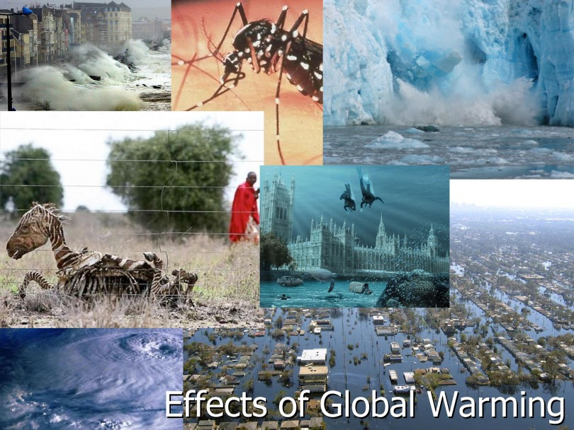 the effect of global warming on The effects of global warming are the environmental and social changes caused (directly or indirectly) by human emissions of greenhouse gases there is a scientific.