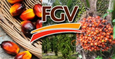 The MoU that FGV signed with various parties is valid for three years.