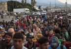They have been arriving in the thousands in Europe daily in the biggest wave of migration to the continent since World War 2.