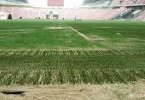 The state of the pitch at the new Singapore National Stadium two years ago that was heavily criticised by big name football and rugby teams.