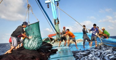 Vietnam's fishing sector was affected by pollution.