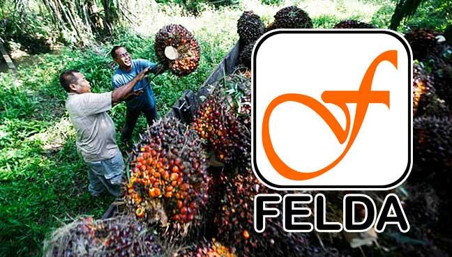 felda-kelapa-sawit