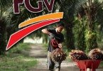 fgv-palm-oil