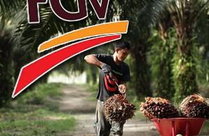 fgv-palm-oil