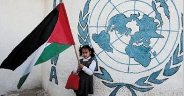palestine un