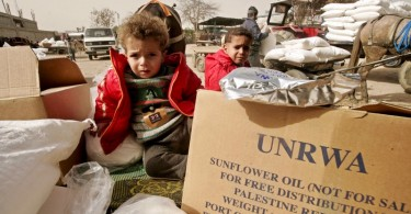 Palestinian children sit on a horse-drawn cart as Palestinians receive food aids from the United Nations Relief and Works Agency (UNRWA) at the Rafah refugee camp, in the southern Gaza Strip.