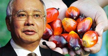 najib oil palm
