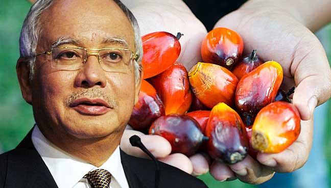 najib oil palm
