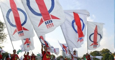 dap flags