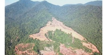 Parts of the forest on Kledang Saiong that have been cleared.
