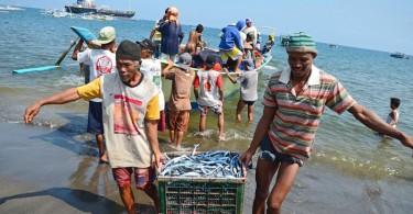 nelayan-ikan