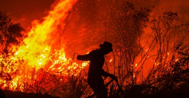 A firefighter trying to put out a fire in a forest at Rambutan village, in Ogan Ilir, South Sumatra province yesterday.