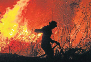 A firefighter struggles to put out a fire in a forest at Rambutan village, in Ogan Ilir, South Sumatra, Indonesia.